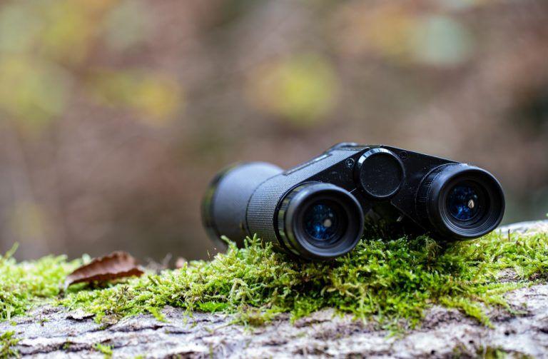 best binoculars guide